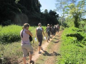 Trekking por la jungla