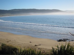 Playa en los Catlins