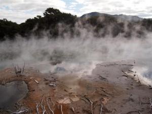 Algo huele mal en Rotorua...