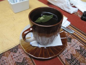 Té de coca, excelente y legal remedio para el zoroche (mal de altura)
