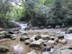 Cascada Pozo Azul, Minca